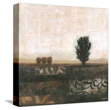 Global Landscape II-Norman Wyatt Jr^-Stretched Canvas Print