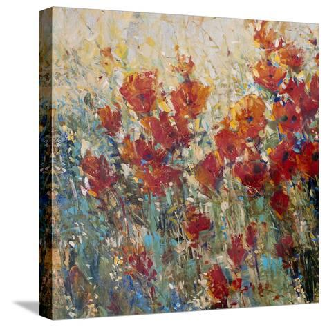 Red Poppy Field I-Tim O'toole-Stretched Canvas Print