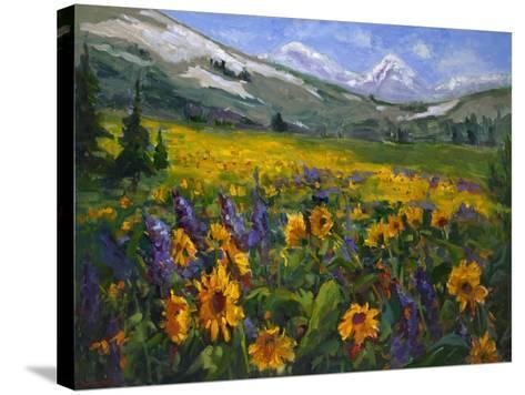 Sierra Awakenings II-Nanette Oleson-Stretched Canvas Print
