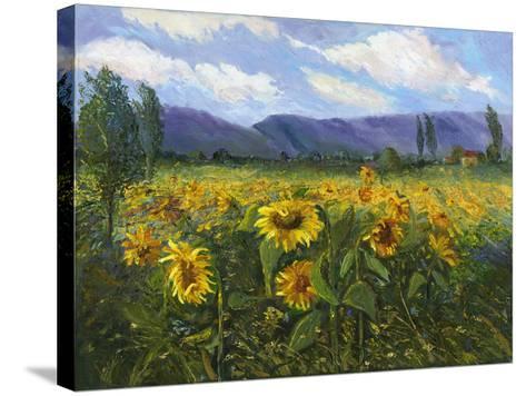 Sierra Awakenings III-Nanette Oleson-Stretched Canvas Print