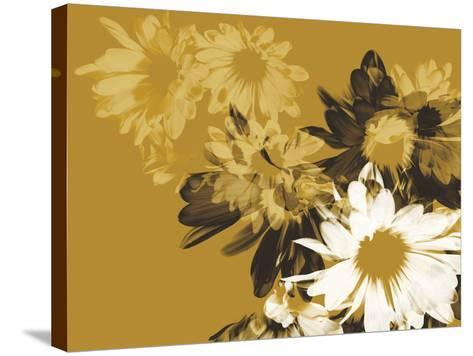 Golden Bloom II-A. Project-Stretched Canvas Print