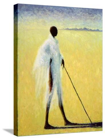 Long Shadow, 1993-Tilly Willis-Stretched Canvas Print