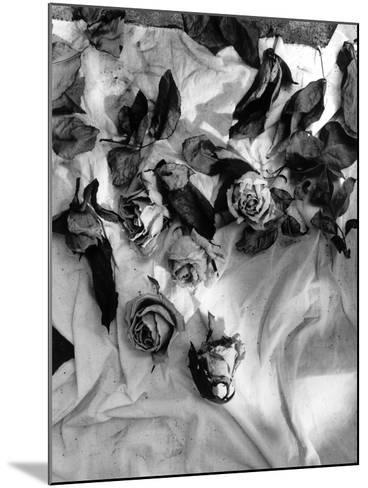 Untitled-Didier Gaillard-Mounted Photographic Print