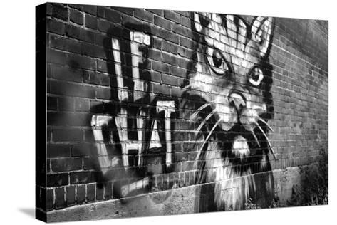 Le Chat Graffiti--Stretched Canvas Print