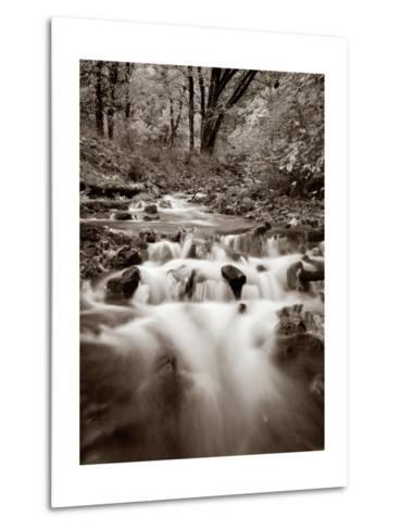 Wahkeena Creek Crop-Alan Majchrowicz-Metal Print