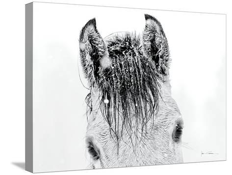 Snow Daze II Crop-Lisa Cueman-Stretched Canvas Print