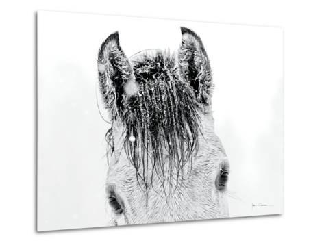 Snow Daze II Crop-Lisa Cueman-Metal Print