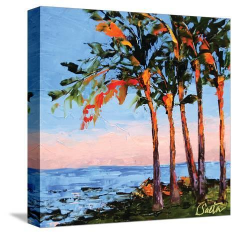 Hawaii Shores-Leslie Saeta-Stretched Canvas Print