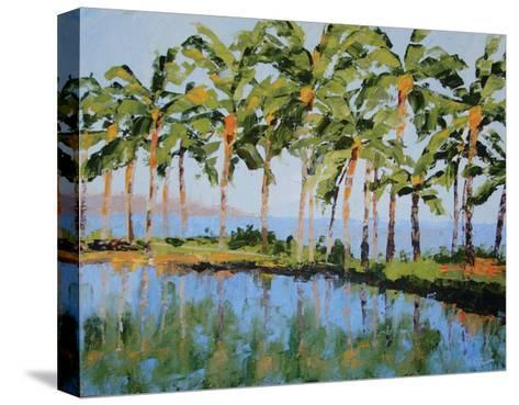 The View at Humu-Leslie Saeta-Stretched Canvas Print