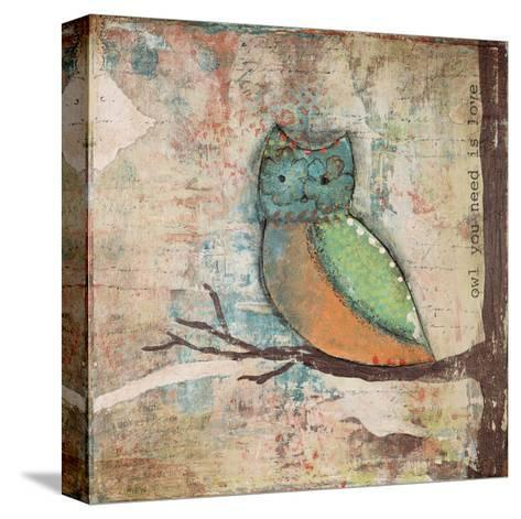 Owl You Need-Cassandra Cushman-Stretched Canvas Print