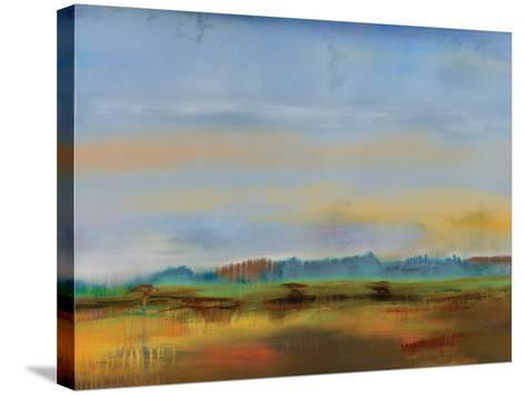 Skyline II-Sokol Hohne-Stretched Canvas Print