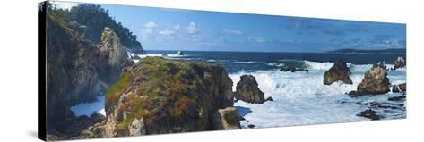 Rugged Coast in Point Lobos State Park, CAlifornia-Anna Miller-Stretched Canvas Print