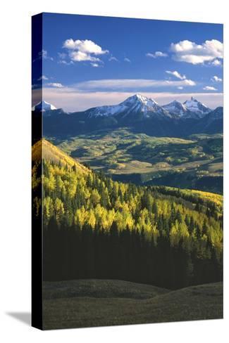 Aspens in Fall Last Dollar Road Telluride Colorado-Scott Cramer-Stretched Canvas Print