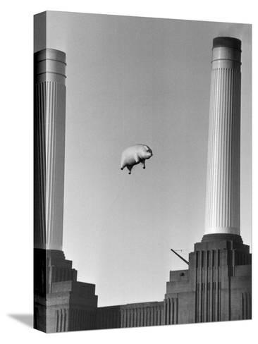 Pink Floyd's Pig-Keystone-Stretched Canvas Print