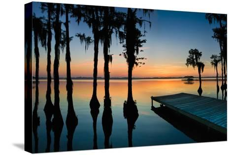Dock and Bald Cypress Trees at White Lake NC-Apostrophe Productions-Stretched Canvas Print