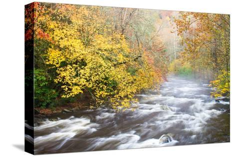 Mountain Stream with Mist and Fall Foliage-Bill Swindaman-Stretched Canvas Print