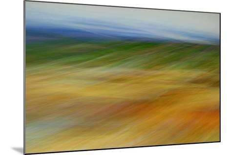 Moved Landscape 6491-Rica Belna-Mounted Giclee Print