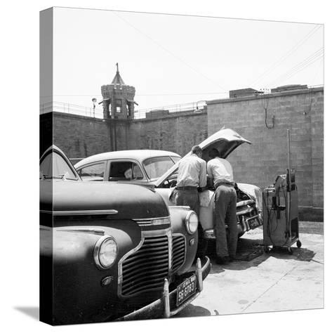 Prison Garage-Three Lions-Stretched Canvas Print