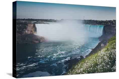 Niagara Falls with Flower and Dandelion-d3sign-Stretched Canvas Print