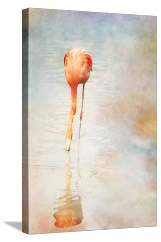 Flamingo-Roberta Murray - Uncommon Depth-Stretched Canvas Print