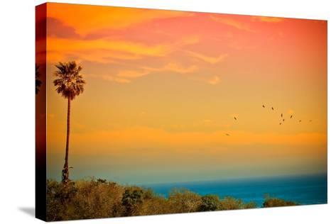 Light of Sun Setting on Malibu Beach-Albert Valles-Stretched Canvas Print