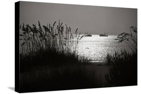 Silhouettes of Sea Oats and Shrimp Boats-Joseph Shields-Stretched Canvas Print