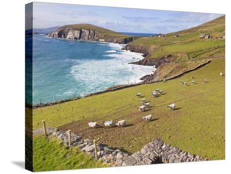 Near Slea Head, Dingle Peninsula, Ireland-Ken Welsh-Stretched Canvas Print