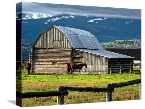 Horse and Barn on Mormon Row, Grand Teton National Park, Wyoming, Usa, May 2008-Bill Wight-Stretched Canvas Print