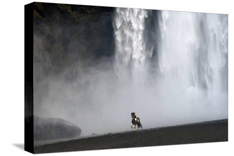 Icelandic Pony at Skogarfoss Waterfall-David Yarrow Photography-Stretched Canvas Print