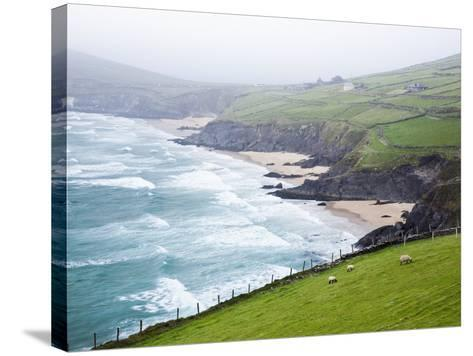 Beaches at Slea Head on Dingle Peninsula-Jorg Greuel-Stretched Canvas Print