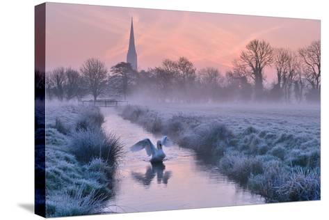 Salisbury Water Meadows-Andreas Jones-Stretched Canvas Print