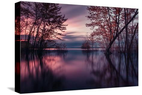 World out of a Dream-Thousand Word Images by Dustin Abbott-Stretched Canvas Print