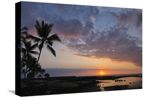 Panorama Sunset with Palms, Keauhou, Hawaii-Alvis Upitis-Stretched Canvas Print