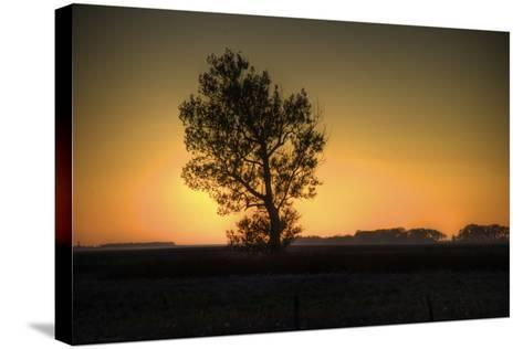 North Dakota Sunset-Angelo Bufalino Photography-Stretched Canvas Print