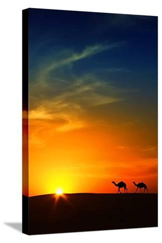 Silhouette of Camels at Sunset,Saudi Arabia-I hope you like my photos-Stretched Canvas Print