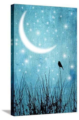 Moonlight Sonata-Marta Nardini-Stretched Canvas Print