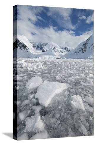 Ice at the Base of a Glacier in Wilhelmina Bay, Antarctica.-Mint Images - David Schultz-Stretched Canvas Print