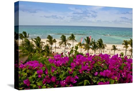 Ocean View, Playa Del Carmen, Quintana Roo-Steve Bly-Stretched Canvas Print