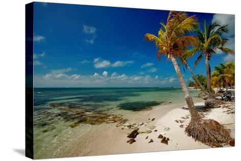 Isla Mujeres-photography is life .... so my life!-Stretched Canvas Print