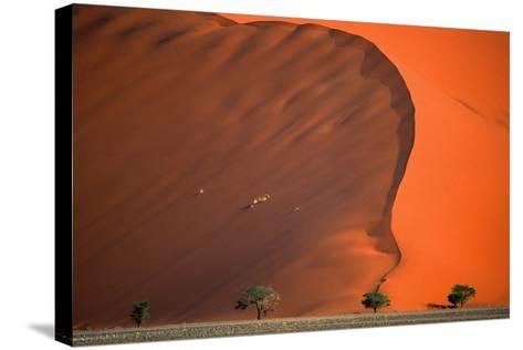 Namib Desert-Vittorio Ricci - Italy-Stretched Canvas Print