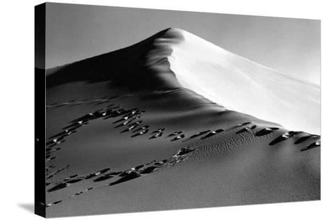 Death Valley Dune-Three Lions-Stretched Canvas Print