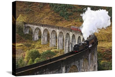 Jacobite Express-David Cation Photography-Stretched Canvas Print
