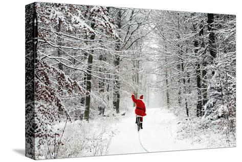 Father Christmas Riding Bicycle Through Beech--Stretched Canvas Print
