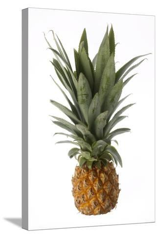 Pineapple--Stretched Canvas Print