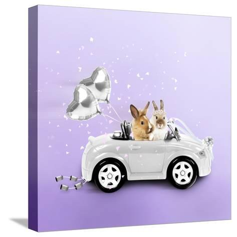 Rabbits Driving Wedding Car--Stretched Canvas Print