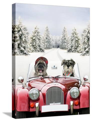 Driving Car Through a Snow Scene--Stretched Canvas Print