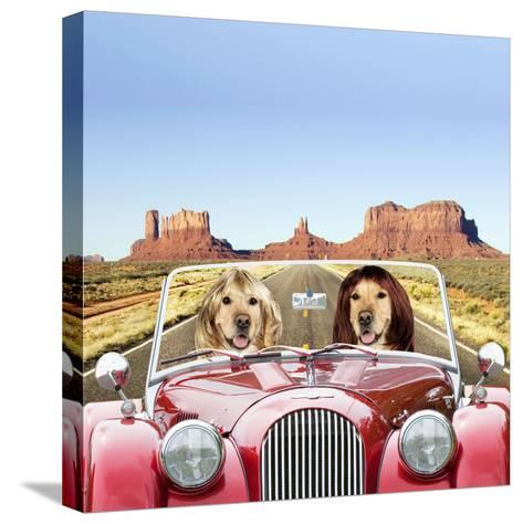 Golden Retrievers Driving Car Through Desert Scene--Stretched Canvas Print
