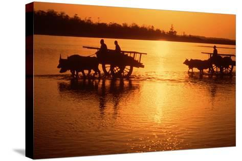 Nepal Loaded Bullock Carts Crossing Rapti River at Sunset--Stretched Canvas Print