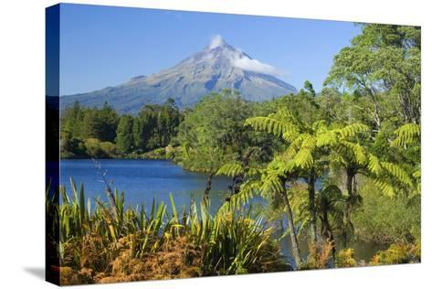 Mount Egmont Lake, Tree Ferns and Perfectly Cone-Shaped--Stretched Canvas Print