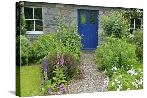 Cottage Garden in Spring with Path Leading to Front Door--Stretched Canvas Print